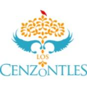 Los Cenzontles Cultural Arts Academy