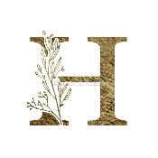Hiranya T